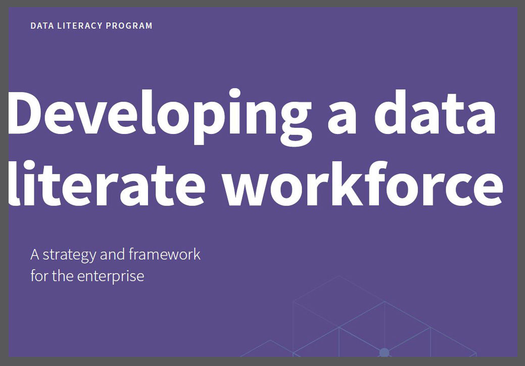 Developing a Data Literate Workforce
